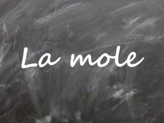 Leçon sur la mole