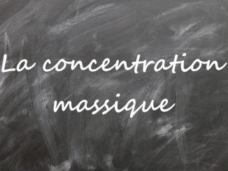 La concentration massique