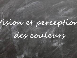 Vision et perception des couleurs