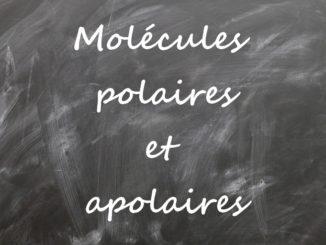Les molécules polaires et apolaires