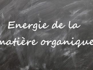Energie de la matière organique