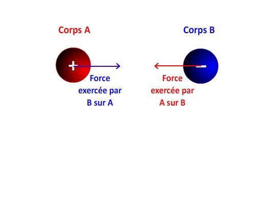 Interaction électrique entre une charge positive et une charge négative